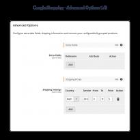 Stel extra velden in en configureer uw verzendkosten rechtstreeks in de Google Shopping Feed.